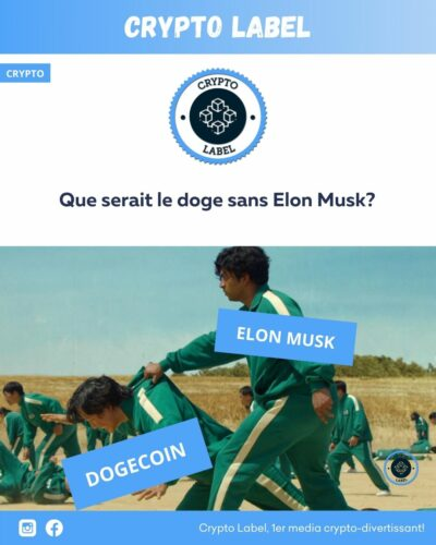 meme squid game doge coin elon musk -crypto-label